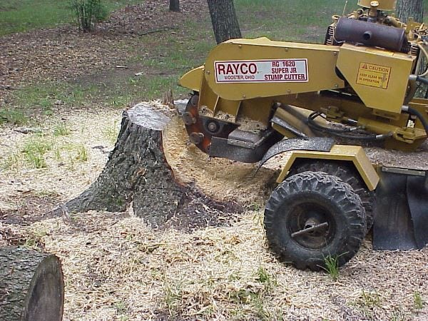 Safely Using A Stump Grinder Eagle Rentals